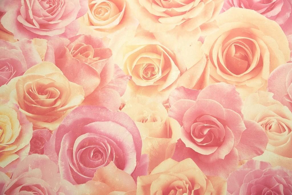 обои с розами фото в интерьере