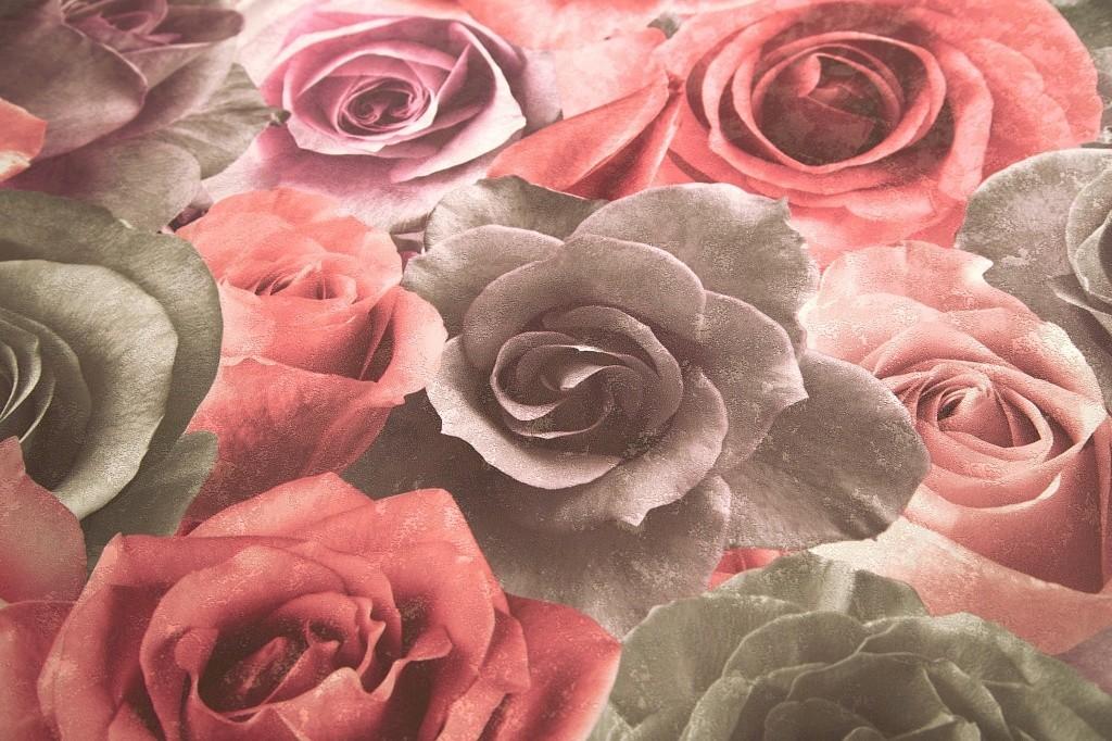 фото обои с розами в интерьере